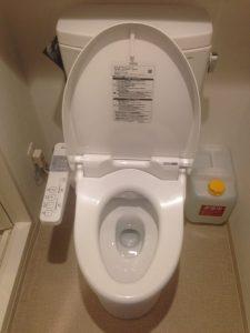 Hotel Toilet