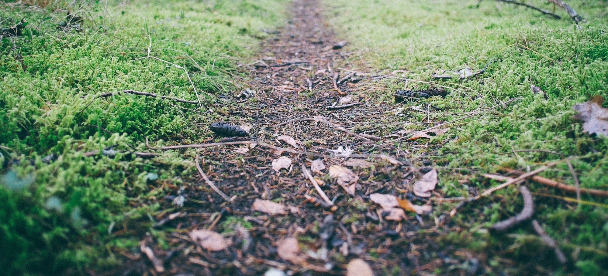 Walking in the Truth (2 John 7-13)